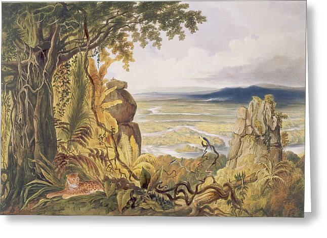The Comuti Or Taquiare Rock Greeting Card
