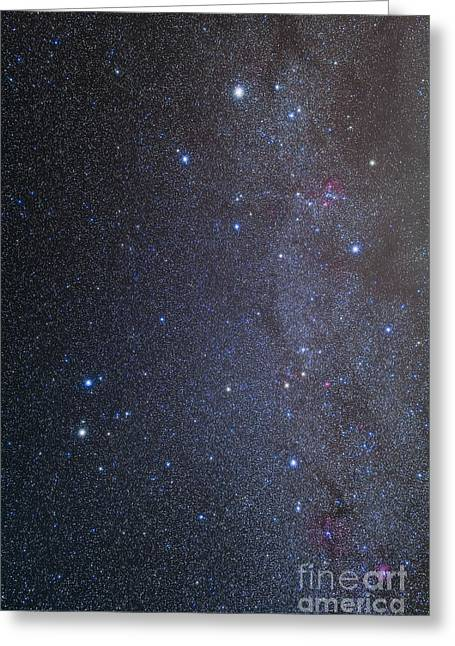 The Constellations Of Gemini And Auriga Greeting Card by Alan Dyer