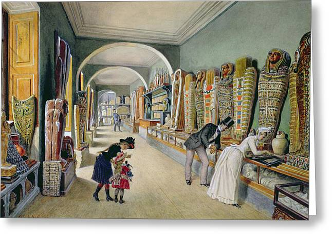 The Corridor And The Last Cabinet Of The Egyptian Collection In The Ambraser Collection Greeting Card by Carl Goebel