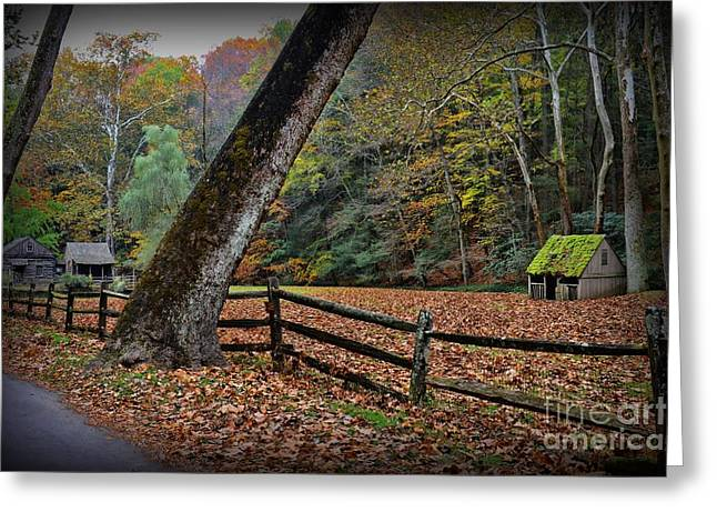 The Country Road Greeting Card by Paul Ward