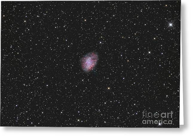The Crab Nebula, A Supernova Remnant Greeting Card by Reinhold Wittich