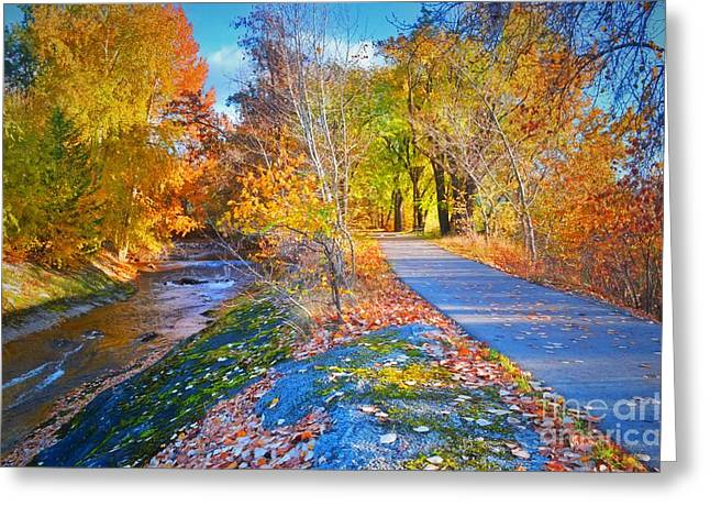 The Creek And The Path Greeting Card by Tara Turner