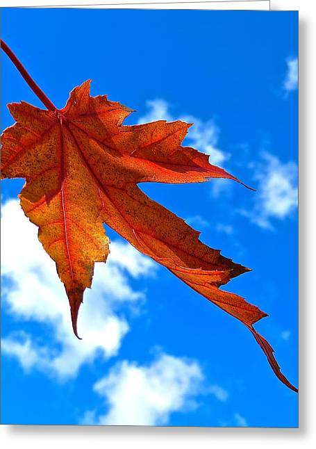 The Dance Of Autumn Greeting Card