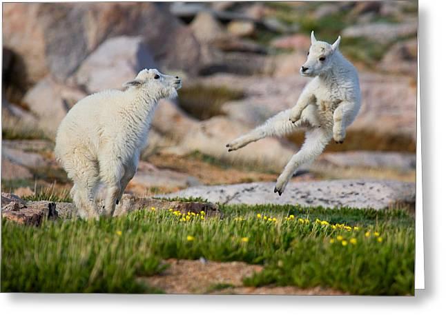 The Dance Of Joy Greeting Card