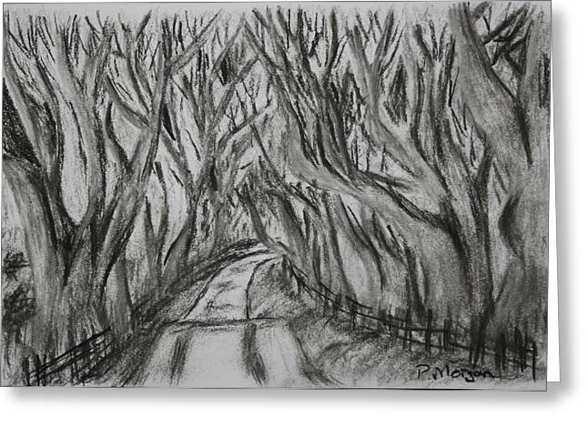 The Dark Hedges Greeting Card by Paul Morgan