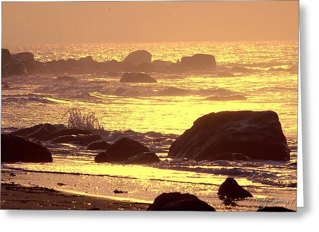 Greeting Card featuring the photograph The Dawn Is Breaking  by Cindy Greenstein