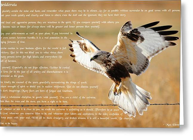 Greeting Card featuring the photograph The Desiderata With Hawk by Greg Norrell