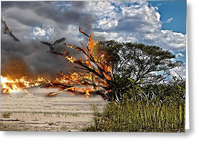 The Destruction Of Our Land Greeting Card by Ronel Broderick