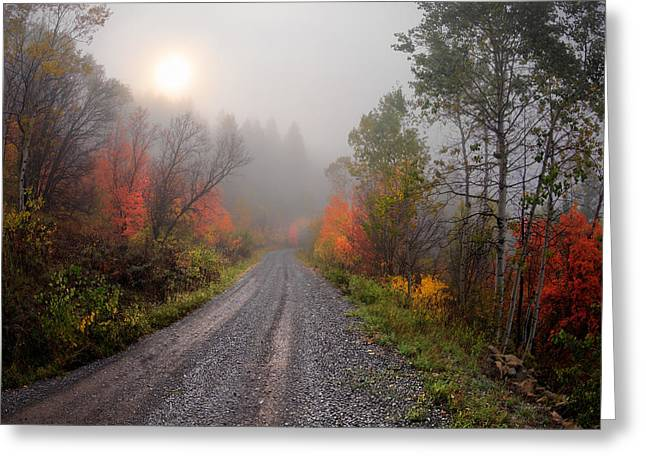 The Dirt Road Greeting Card by Leland D Howard