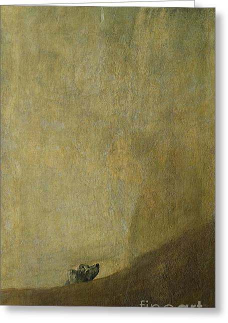 The Dog Greeting Card by Goya