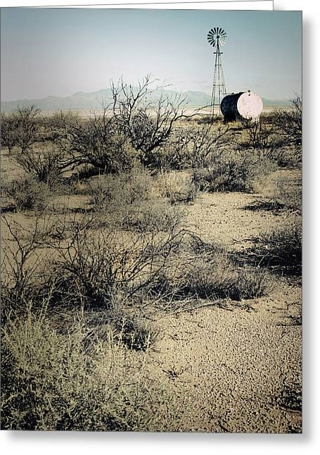 The Dry Lands Of Arizona Greeting Card