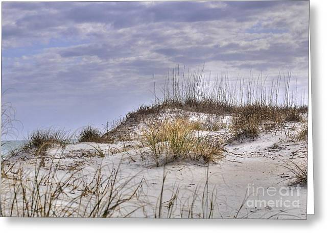 Greeting Card featuring the photograph The Dunes At Huntington Beach State Park by Kathy Baccari