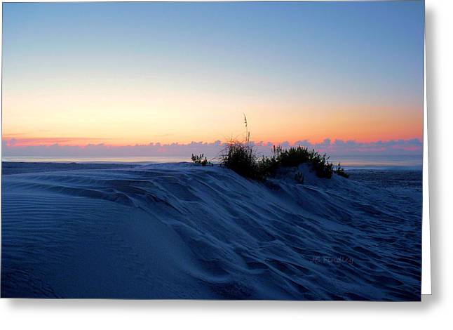 The Dunes Greeting Card by JC Findley