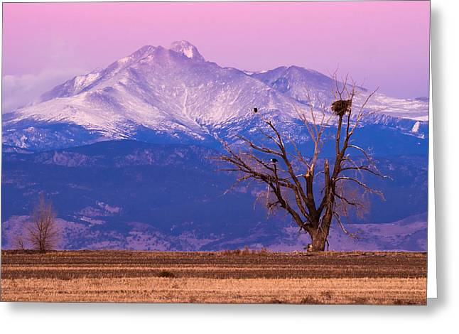 The Eagles And The Peaks Greeting Card
