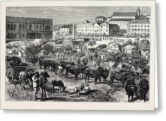 The Early Morning Market, Port Elizabeth Greeting Card by South African School