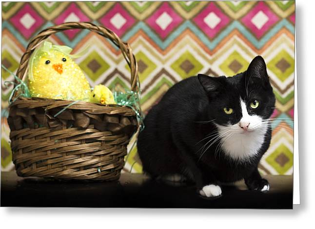 The Easter Tiggy Greeting Card