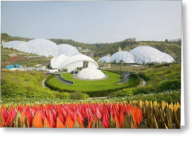 The Eden Project In Cornwall Greeting Card by Ashley Cooper