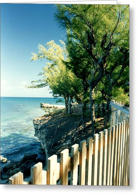 The Edge Of The Island Greeting Card by Susan Duda
