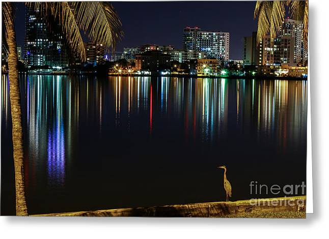 The Egrets View Greeting Card by Rene Triay Photography