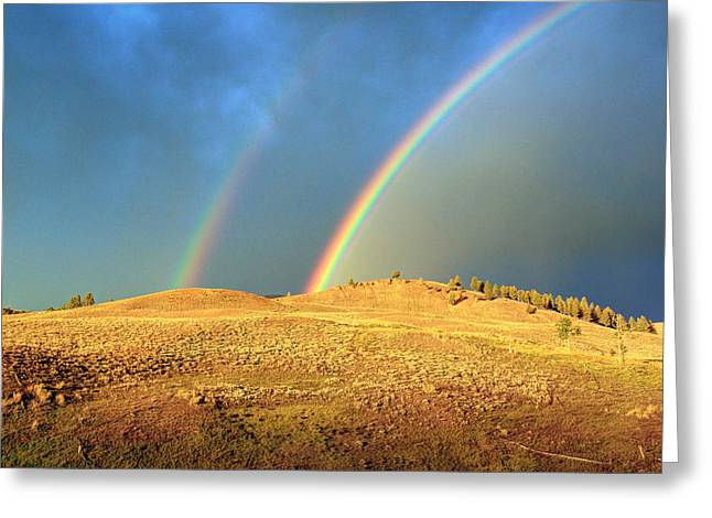 The End Of The Rainbows Greeting Card by Jackie Novak