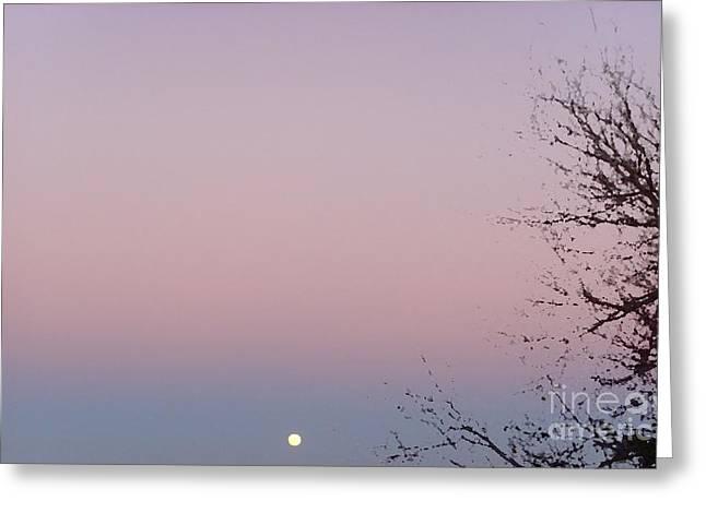 The Ephemeral Twilight Greeting Card by Alexander Van Berg