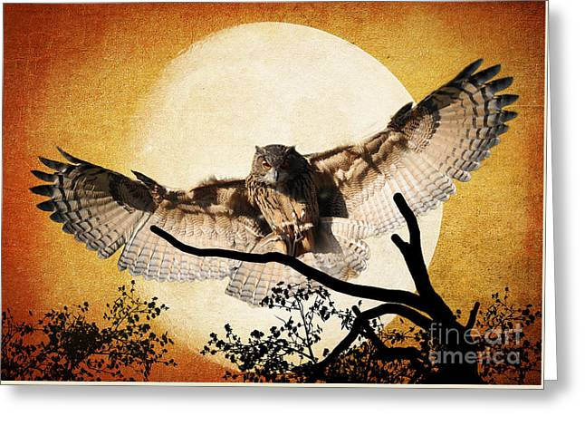 The Eurasian Eagle Owl And The Moon Greeting Card