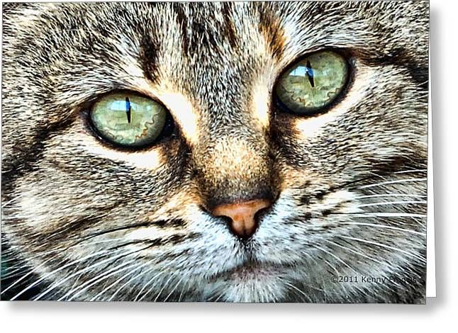 The Eyes Have It Greeting Card by Kenny Francis