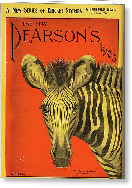 The Face Of A Zebra Greeting Card
