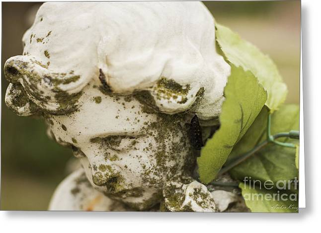 Greeting Card featuring the photograph The Face Of An Angel by Amber Kresge