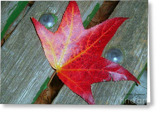 The Face Of Autumn Greeting Card by Leanne Seymour