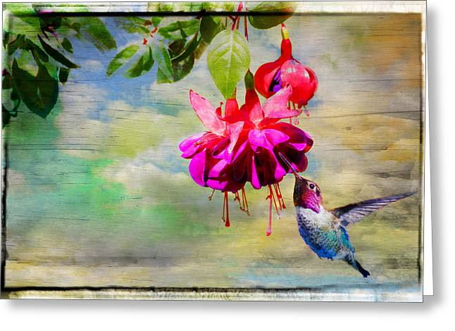 The Face Of Fuchsia Greeting Card by Lynn Bauer