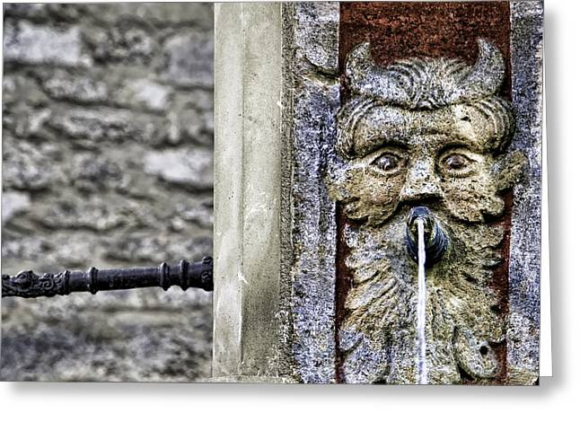 The Face Of The Fountain Greeting Card by Joanna Madloch
