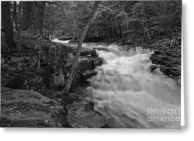 The Falls Greeting Card by David Rucker