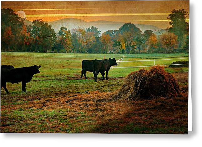 The Far Side Greeting Card by Diana Angstadt