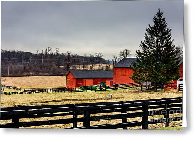 Greeting Card featuring the photograph The Farm by Rafael Quirindongo
