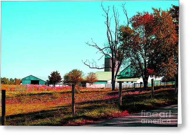 The Farmland In Autumn Greeting Card by Tina M Wenger