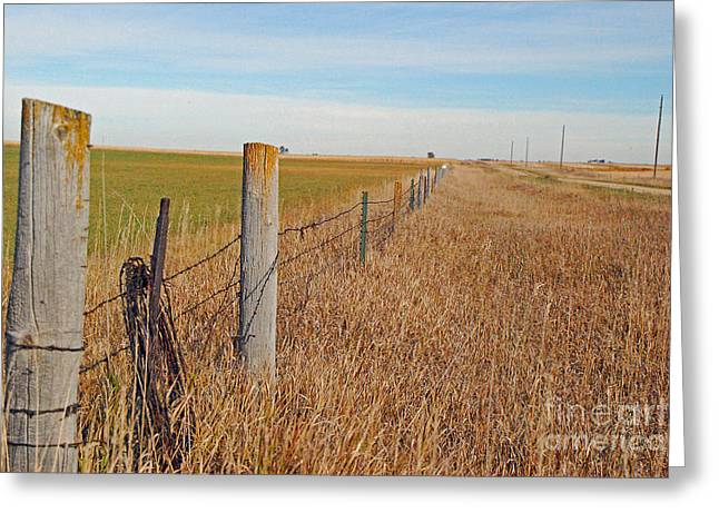 The Fence Row Greeting Card by Mary Carol Story