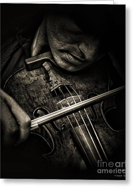 The Fiddler Greeting Card