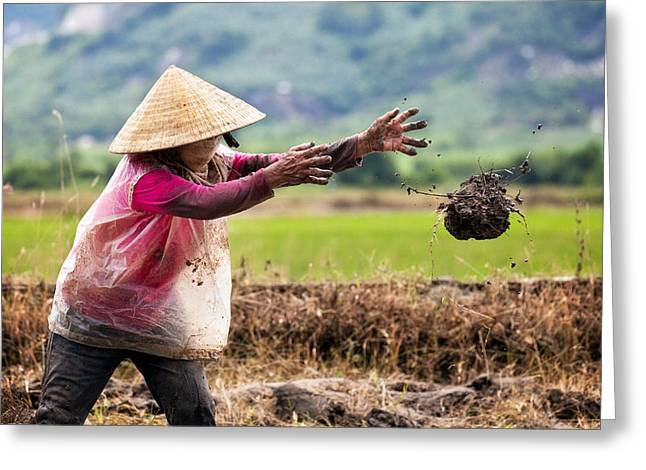 The Fields Of Nha Trang Greeting Card by Nicole S Young