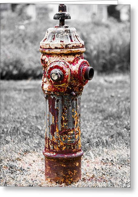 Greeting Card featuring the photograph The Fire Hydrant by Ricky L Jones