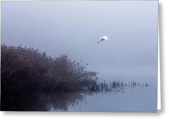 The Flight Of The Egret Greeting Card