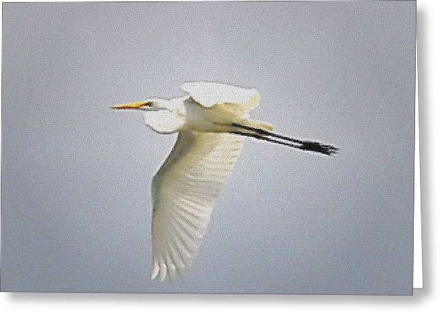 The Flight Of The Great Egret With The Stained Glass Look Greeting Card