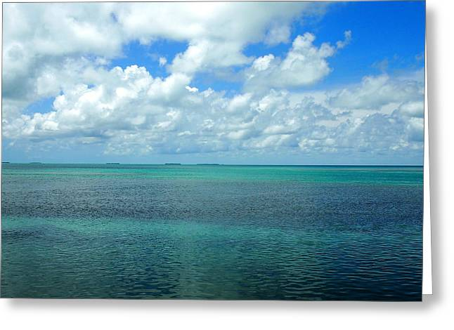 The Florida Keys Greeting Card by Amy McDaniel