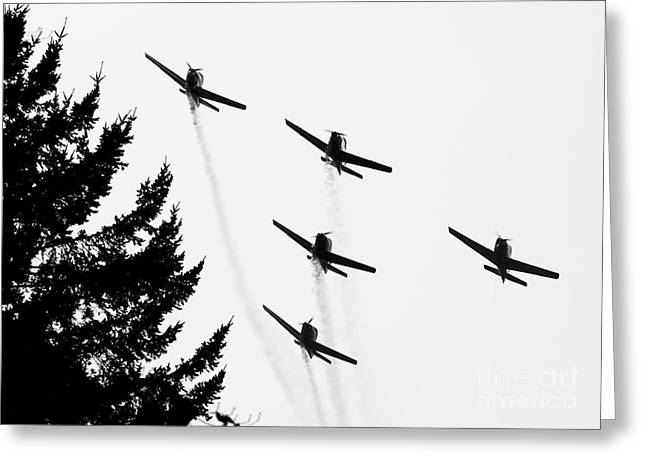 The Fly Past Greeting Card