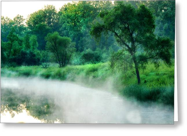 The Foggy Lake Greeting Card by Kimberleigh Ladd