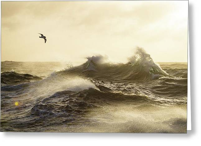 The Formidable Drake Passage Greeting Card