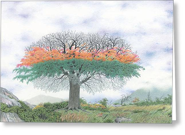 The Four Seasons Tree Greeting Card by Wilfrid Barbier
