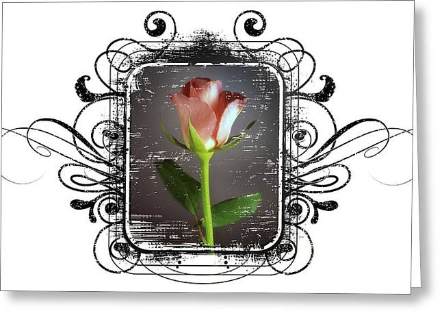 The Framed Rose Greeting Card by Mauro Celotti