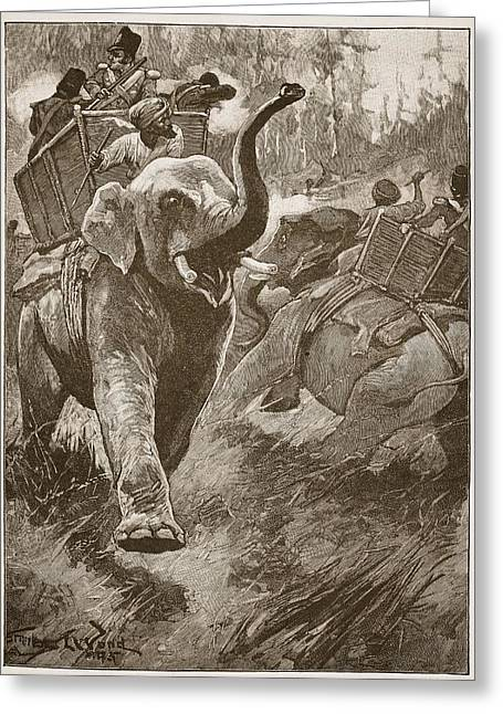The Frightened Elephants Rushed Back Greeting Card by Stanley L. Wood