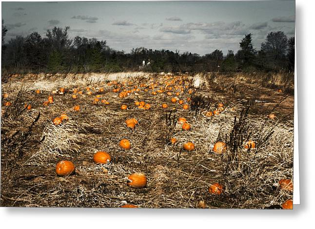 The Frost Is On The Pumpkins Greeting Card by Phil Welsher